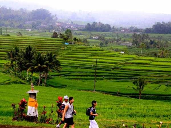 Paisaje cultural de Bali (Indonesia)